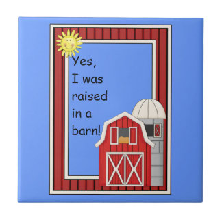 Red Barn and Grain Silo - Animal Lover Kitchen Tile
