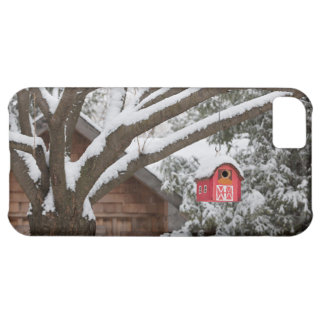 Red barn birdhouse on tree in winter iPhone 5C cover