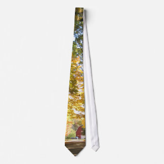 Red Barn Country Road Tie