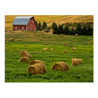 Red Barn, hay bales, Albion, Palouse Area 2 Postcard