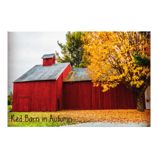 Red Barn in Autumn Photo