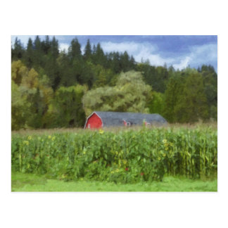 Red Barn In The Field Post Card