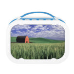 Red barn in wheat & barley field in Whitman 2 Yubo Lunch Boxes