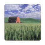 Red barn in wheat & barley field in Whitman 2 Puzzle Coaster