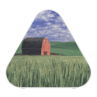 Red barn in wheat & barley field in Whitman 2 Speaker