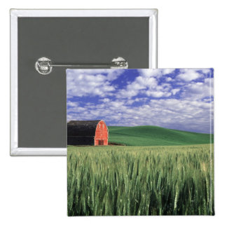 Red barn in wheat & barley field in Whitman 2 Inch Square Button