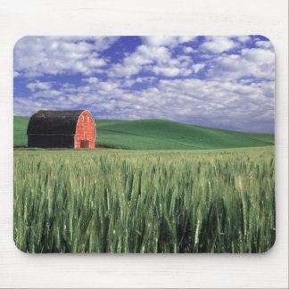 Red barn in wheat & barley field in Whitman Mouse Pad