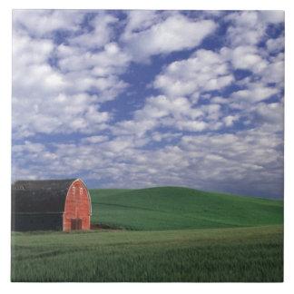 Red barn in wheat & barley field in Whitman Tile