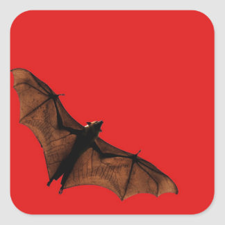 Red Bat Square Sticker