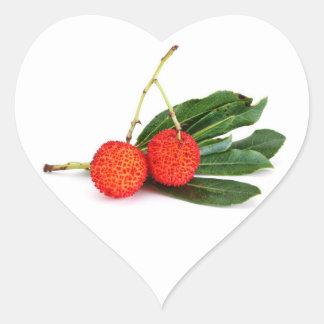 red bayberry heart sticker