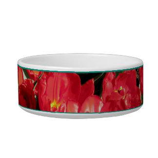 Red Beauties Bowl