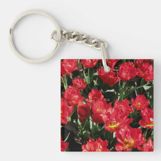 Red Beauties Keychain