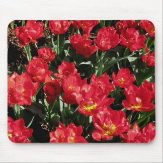 Red Beauties Mousepads