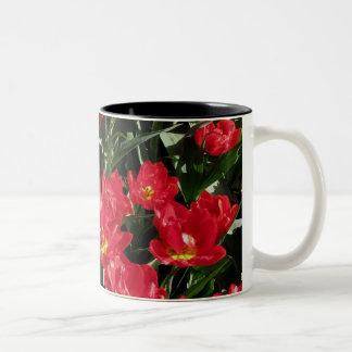 Red Beauties Two-Tone Coffee Mug