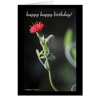 Red Beauty Happy Birthday Card
