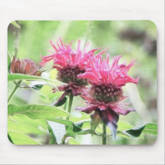 Red Bee Balm Blooms Mouse Pad