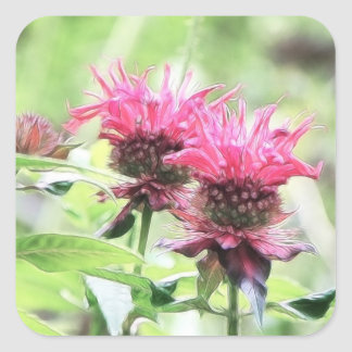 Red Bee Balm Blooms Square Sticker