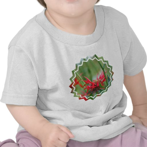 Red Bee Balm Flowers Baby T-Shirt