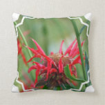 Red Bee Balm  Pillow