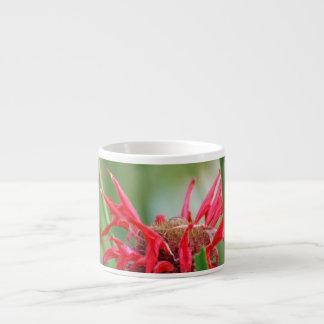 Red Bee Balm  Specialty Mug Espresso Mugs