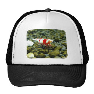 Red Bee Products & Gift shop Trucker Hat