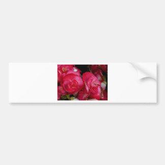 Red Begonia Flowers Bumper Sticker