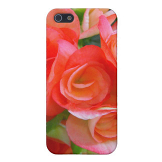 red begonia flowers iPhone SE/5/5s case