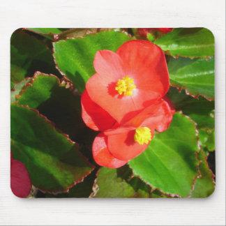 Red Begonias Mousepad