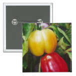 Red Bell Peppers Pinback Button
