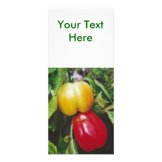 Red Bell Peppers Ripen on Plant with Leaves Rack Card