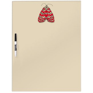 Red Bella Moth Dry Erase Board