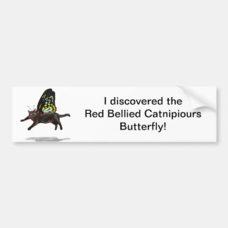 red bellied cat butterfly kitty fairies car bumper sticker