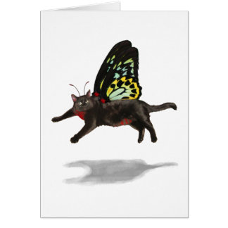 red bellied cat butterfly kitty fairies cards