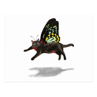 red bellied cat butterfly kitty fairies postcard