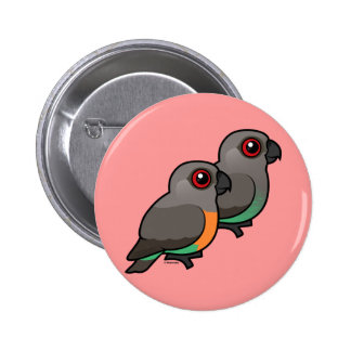 Red-bellied Parrot Pair Button