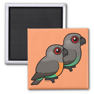 Red-bellied Parrot Pair 2 Inch Square Magnet