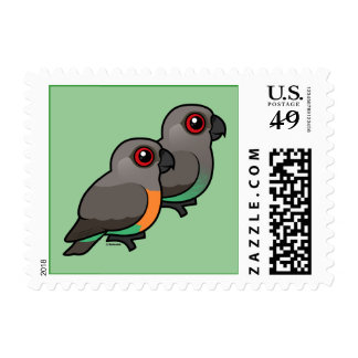 Red-bellied Parrot Pair Stamps