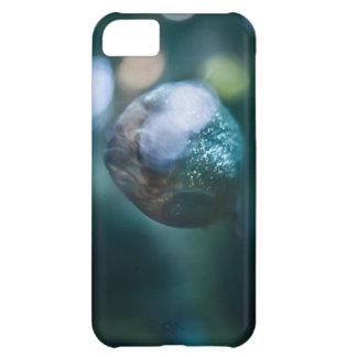 Red Bellied Piranha iPhone 5C Case