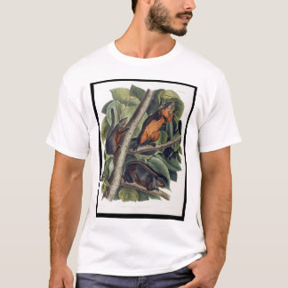 Red-Bellied Squirrel T-Shirt