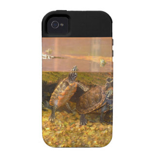 Red Bellied Turtle (Alabama) iPhone 4 Cases