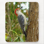 Red bellied Woodpecker Bird Mousepad
