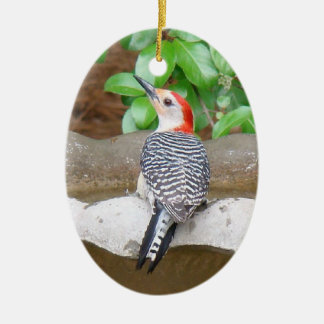 Red-bellied Woodpecker Ceramic Ornament
