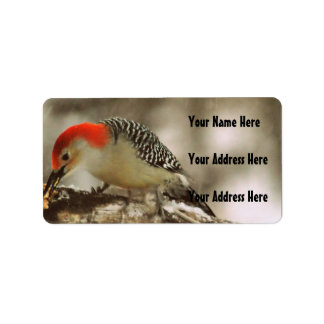 Red Bellied Woodpecker Label