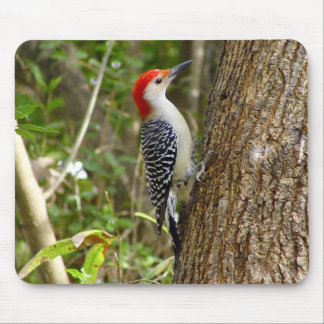 Red Bellied Woodpecker Mousepad 2