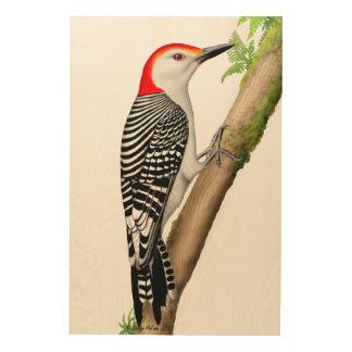 Red Bellied Woodpecker..on Wood Wall Art