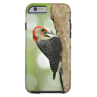 Red-Bellied Woodpecker Tough iPhone 6 Case