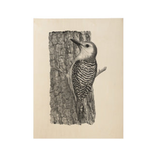Red-bellied Woodpecker Wood Poster