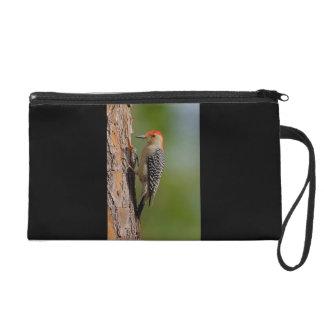 Red-bellied Woodpecker Wristlet