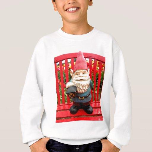 Red Bench Sweatshirt