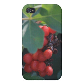 Red Berries 4/4s iPhone 4 Cover